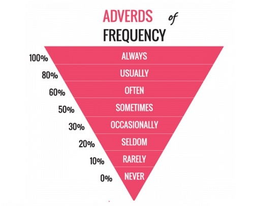 các trạng từ chỉ tần suất (Adverb of Frequency)